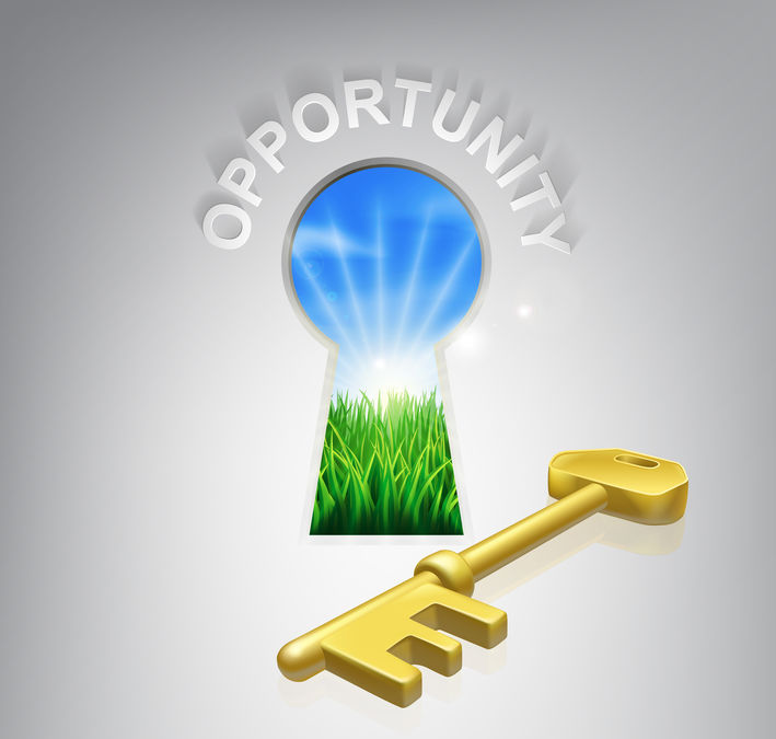 seizing the areas of opportunity to move forward toward success